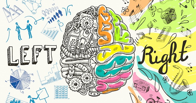 Brain Dominance & the Immune System   Left vs Right Brain