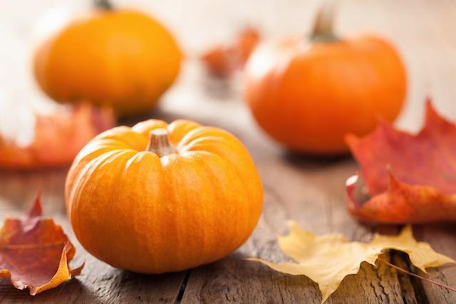 Pumpkin Season | GFCF Pumpkin Recipe
