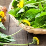 dandelion salad