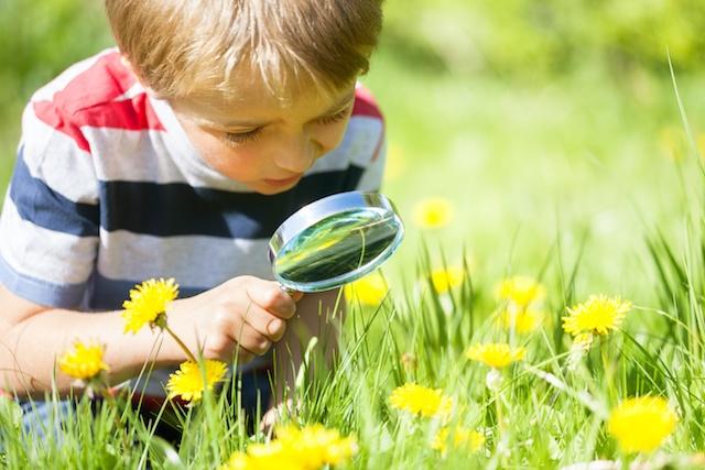 Summer Learning Strategies | Brain Balance Centers