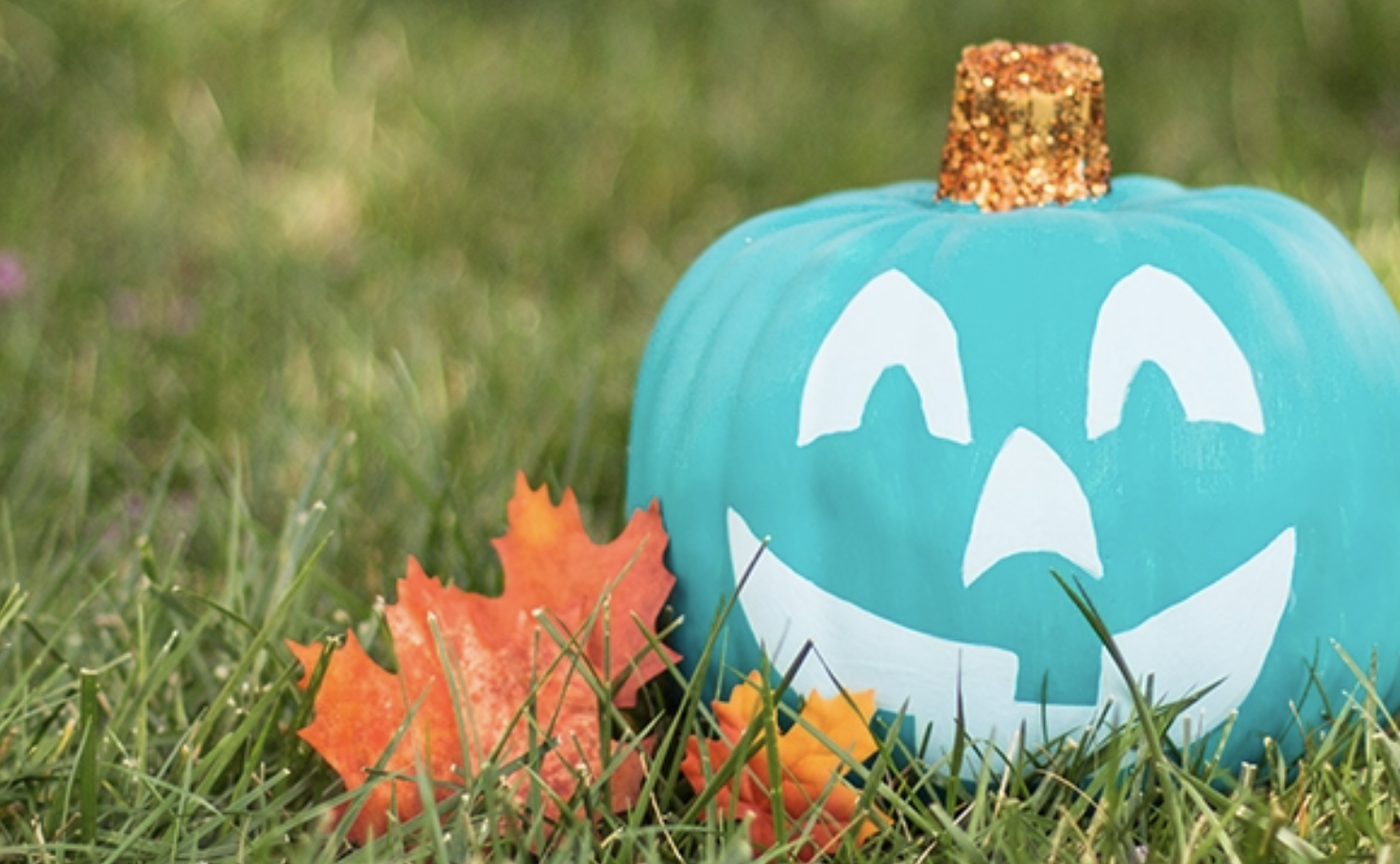 teal-pumpkin-project-balance360